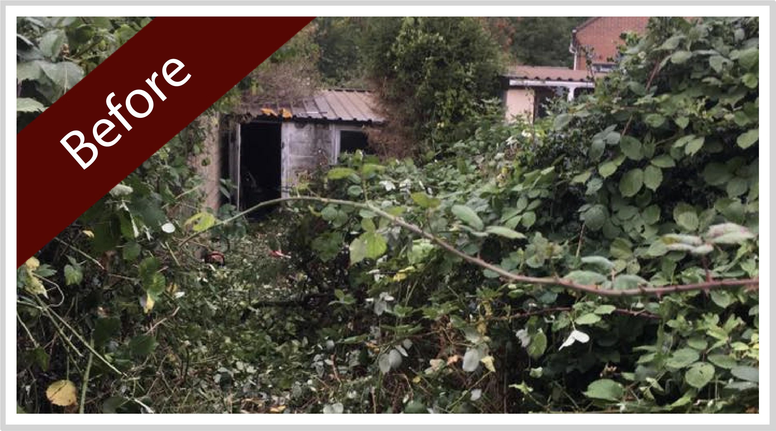 garden-clearance-somerset